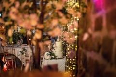 wedding-by-Martina-paul
